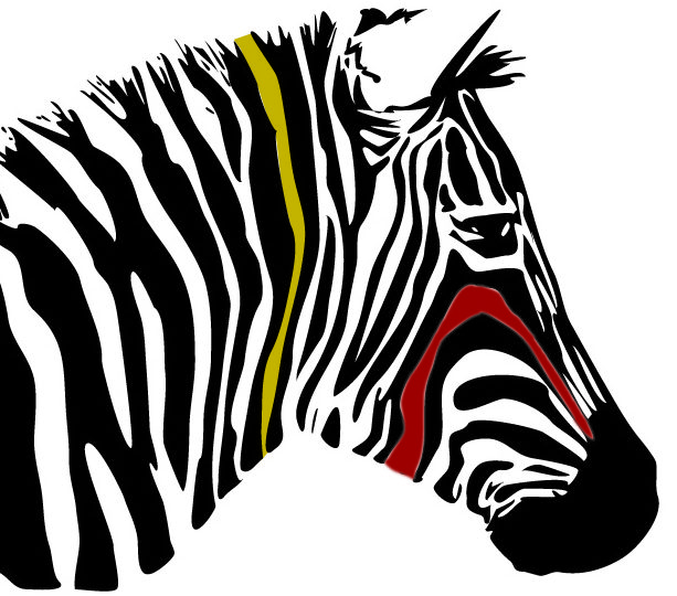 Just In: The Funky Zebra