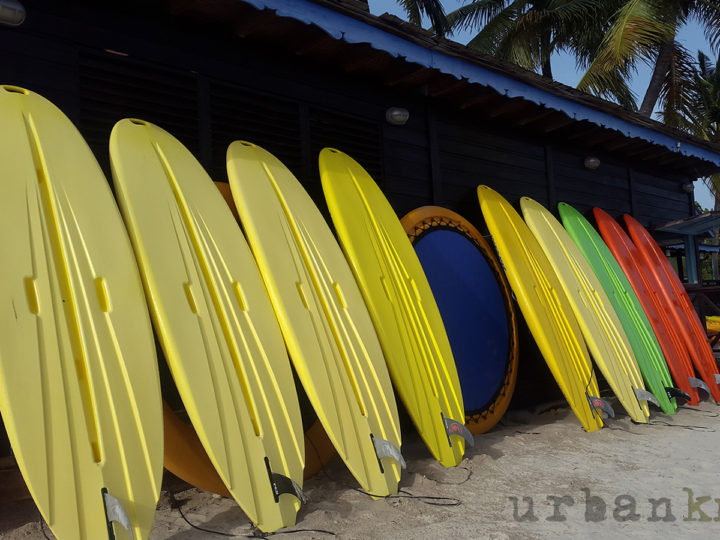 Urban Journeys: Surfs Up